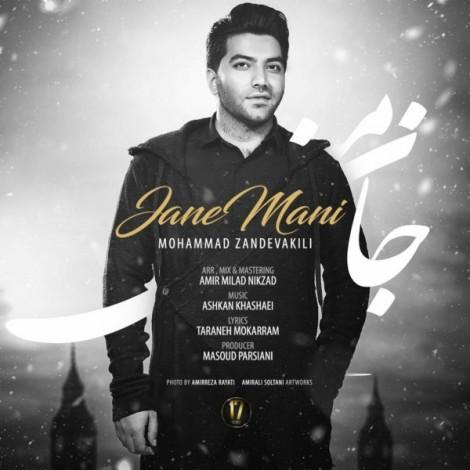 Mohammad Zand Vakili - 'Jane Mani'