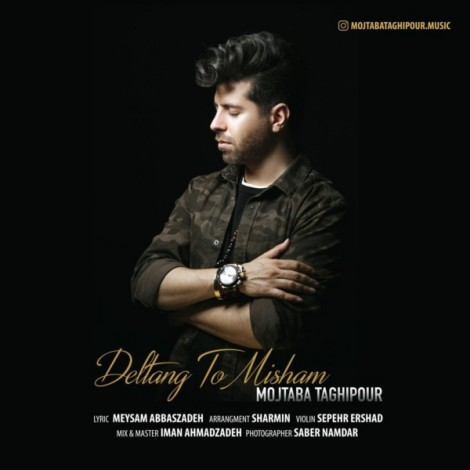 Mojtaba Taghipour - 'Deltange To Misham'