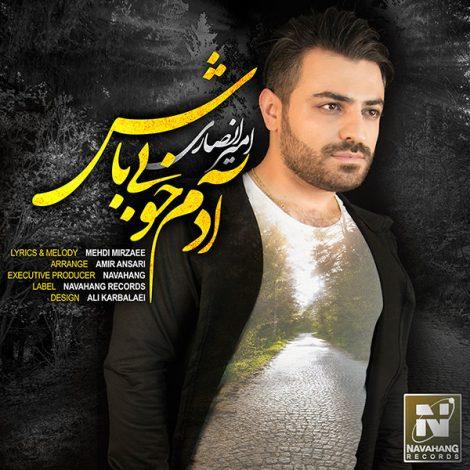 Amir Ansari - 'Adame Khobi Bash'