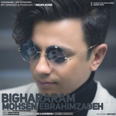 Mohsen Ebrahimzadeh - 'Bighararam'