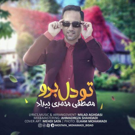 Mostafa Mohamadi Bidad - 'Too Del Boro'