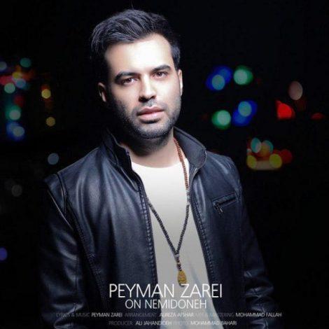 Peyman Zarei - 'On Nemidoneh'