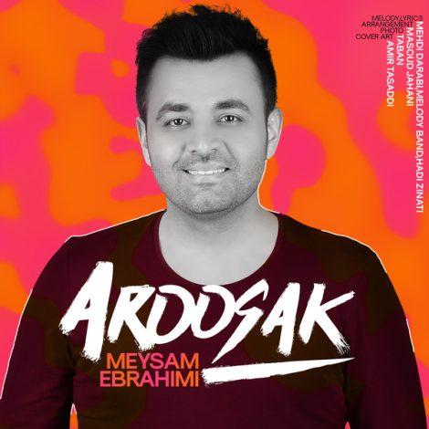 Meysam Ebrahimi - 'Aroosak'