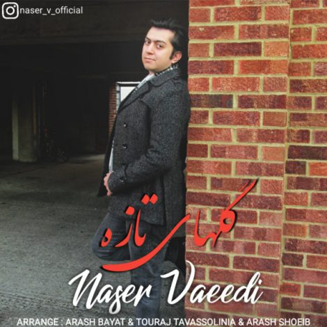 Naser Vaeedi - 'Behtarin Eshgh (New Version)'