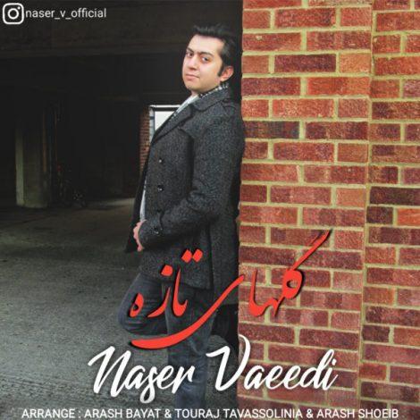 Naser Vaeedi - 'Bi Khejalat (New Version)'