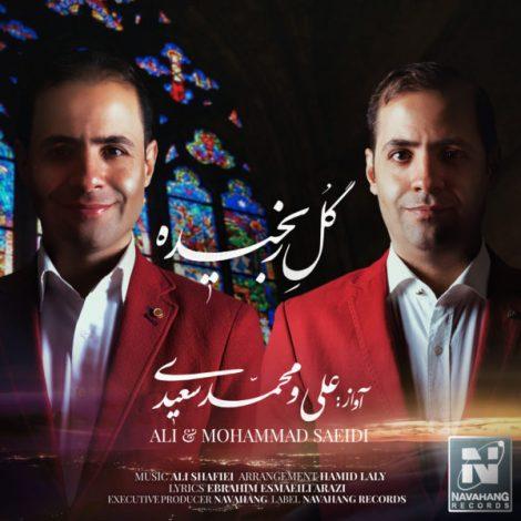 Ali Saeidi  & Mohammad Saeidi - 'Gole Ranjideh'