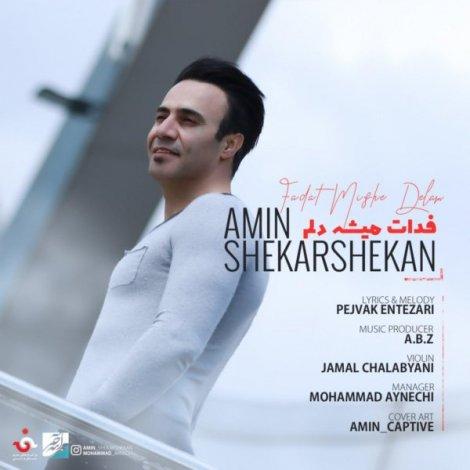 Amin Shekarshekan - 'Fadat Mishe Delam'