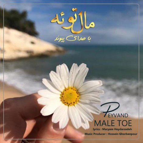 Peyvand - 'Male Toe'