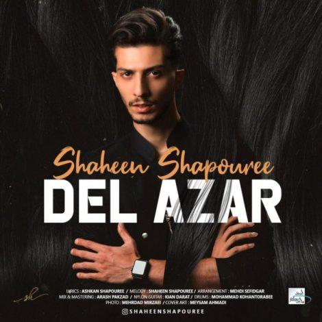 Shaheen Shapouree - 'Del Azar'